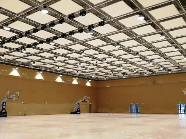 京东方体育馆建筑龙8国际电脑版工程
